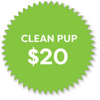 dog wash rates Auckland